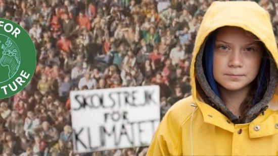 """W la Pasqua di Resurrezione del Pianeta. Papa Francesco a Greta Thunberg: """"Grazie per aver difeso il clima"""". """"Vai avanti così"""""""