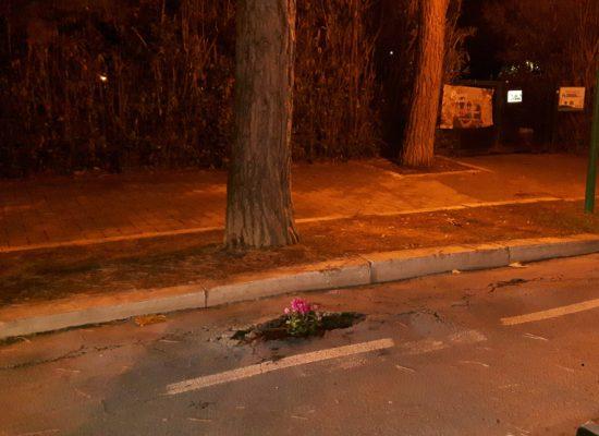 Piantàti sulla Pista.  Mettete dei fiori nei crateri stradali!